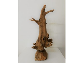 Racine taille moyenne en bois - teck de plantation